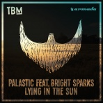 Palastic feat. Bright Sparks