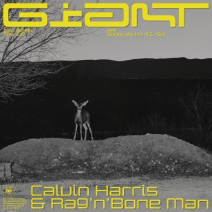 Calvin Harris, Rag'n'Bone Man